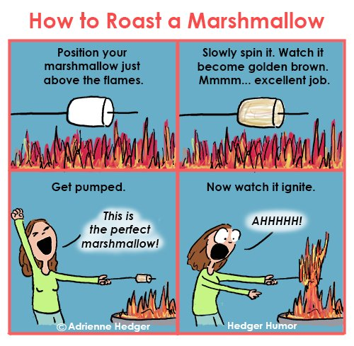 S'mores roasting marshmallows 500